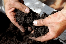 Compost & Fertilisers
